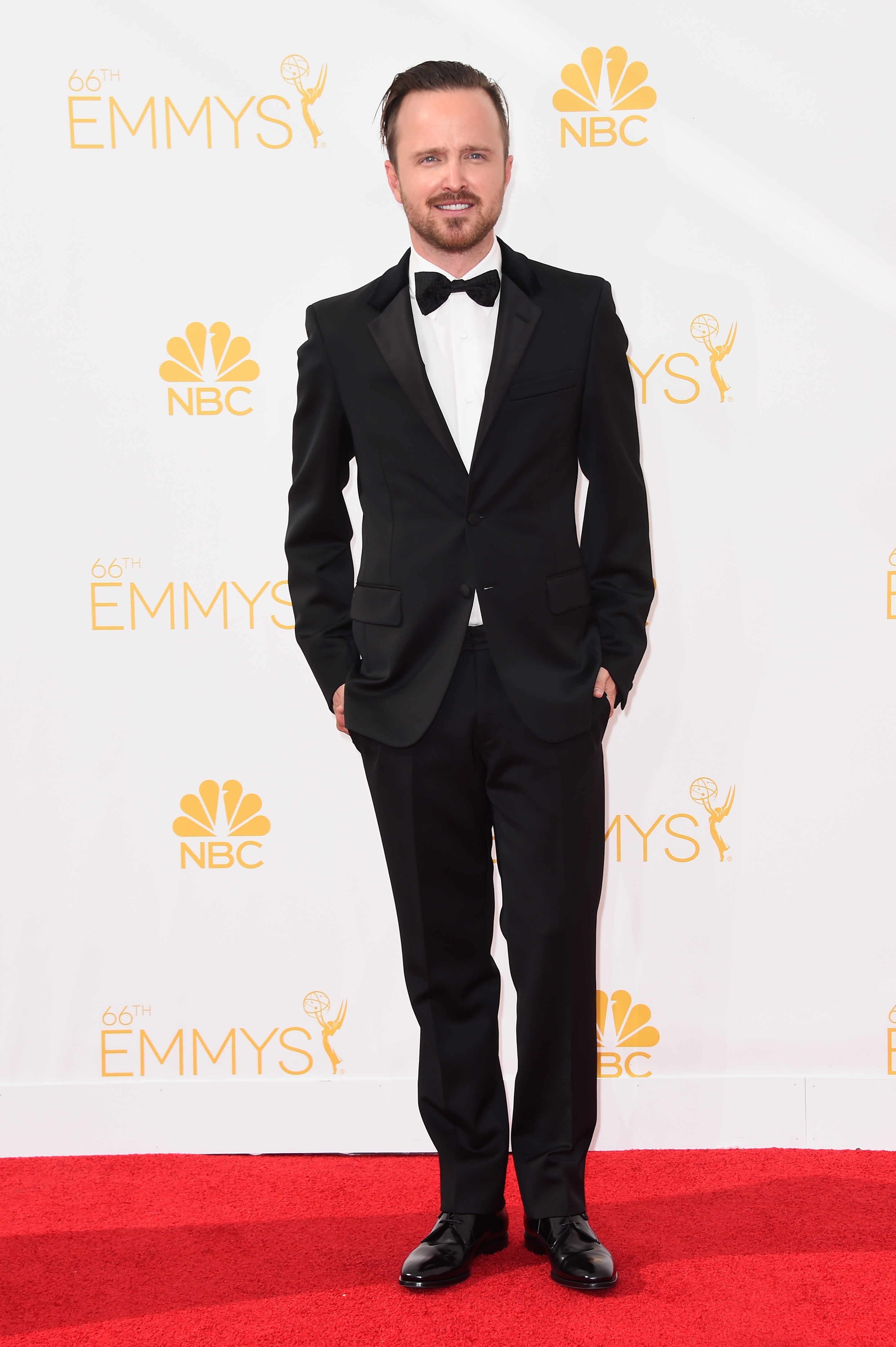 Top 10 smoking hot Emmy Awards red carpet looks [GALLERY]