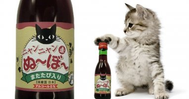 Introducing the first red wine made for cats! #drunkcat